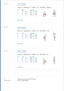 PT Flow treningsprogram i PDF